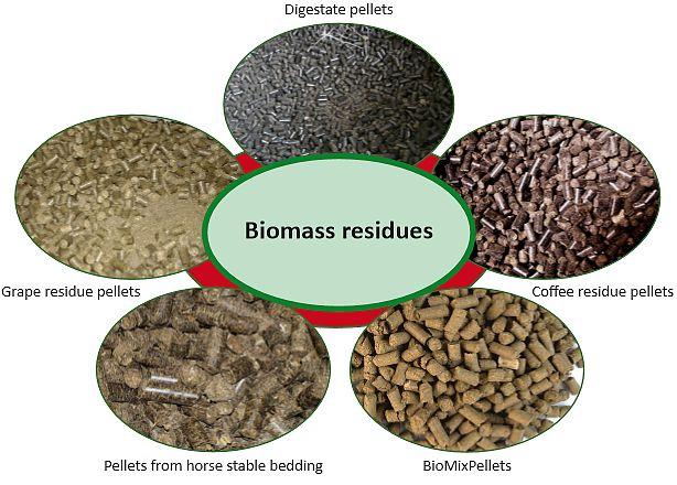 biomass fuel - photo #23